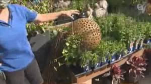 Get Gardening: Decorative touches (04:16)
