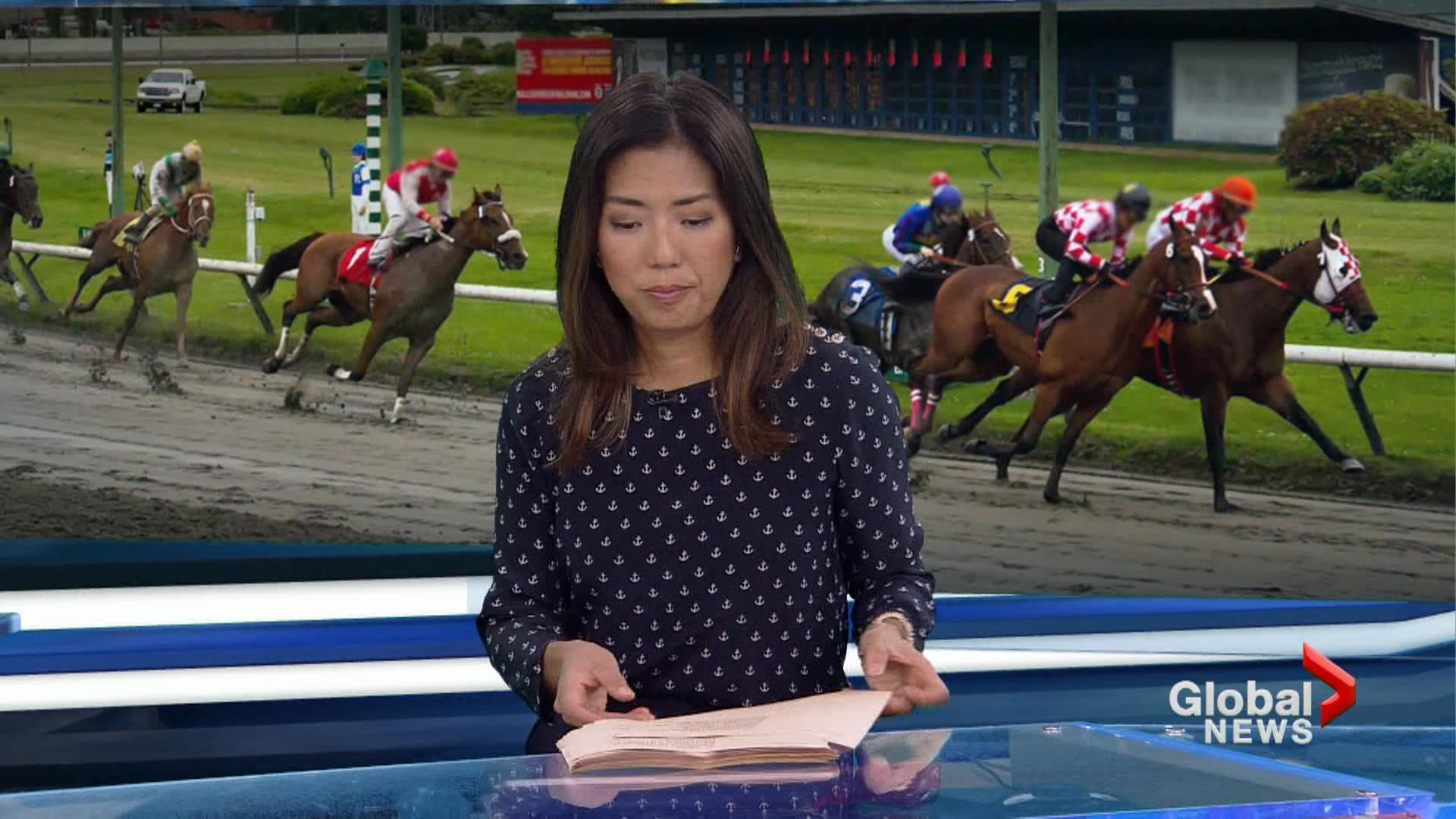 New developments in arrests at Hastings Racecourse