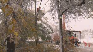 Manitoba premier to declare state of emergency following snow storm