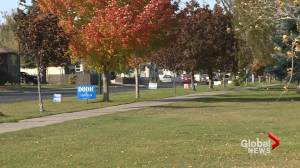 What to know about school board trustees ahead of Lethbridge municipal election (01:53)