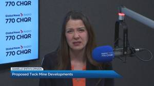 Danielle Smith joins the conversation on Global News Morning Calgary (03:06)