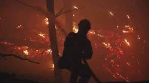 Scientists warn larger, more intense global wildfires ahead amid climate change (01:55)