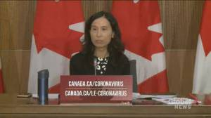 Coronavirus: Tam says pandemic has 'shone a spotlight' on inequalities in Canada's health-care system (01:08)