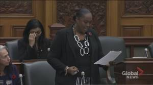 Powerful message by MPP at Queen's Park about bullying, suicide