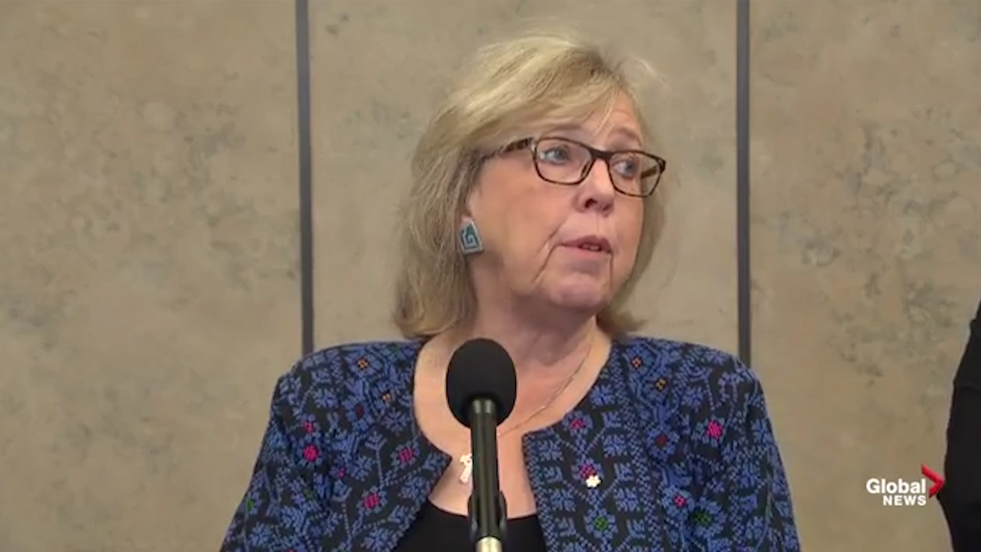 Elizabeth May on Alberta: 'fossil fuels have no economic future'