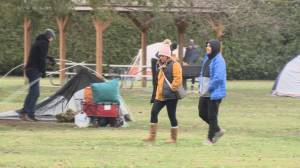 Calls to close south side of Peace Arch Park (02:05)