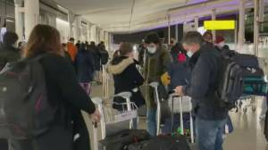 Access denied: More countries ban UK travellers due to new COVID-19 strain (02:05)