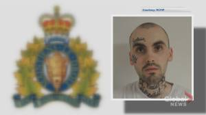 Riverview, N.B., shooting leads to 12-hour manhunt (02:08)