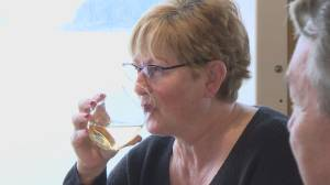 Beer and wine trial sets sail on three BC Ferries' vessels