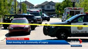 One dead after shooting in Calgary's southeast