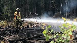 Wood harvester loses $150,000 in timber in Saint-Paul forest fire (01:52)
