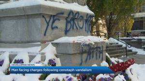 Suspect cites Don Cherry's firing as part of motive behind Old City Hall cenotaph vandalism
