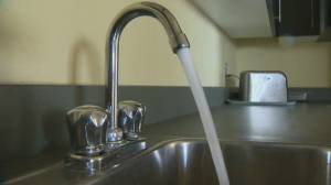 Controversial study renews debate over Fluoride