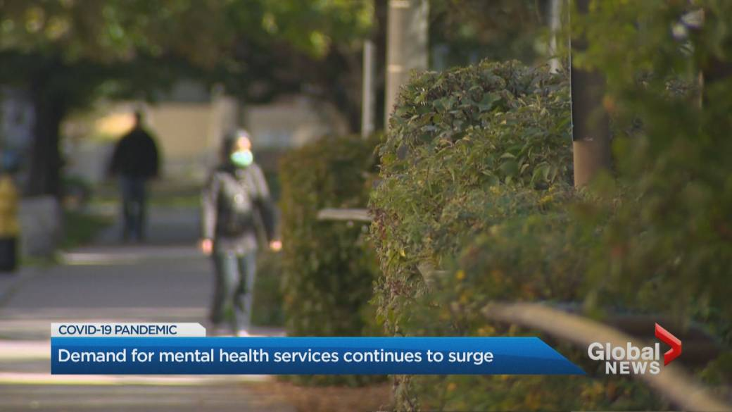Click to play video 'Calls for mental health supports grow in Toronto as the pandemic continues'