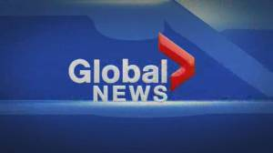 Global News at Noon Edmonton: March 20
