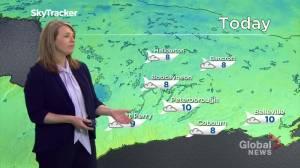 Peteborough Regional Weather Update: April 1, 2020