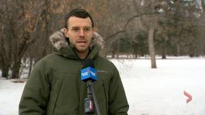 Regina councillor calls PCC's Wascana Park bylaw re-write 'unsatisfactory' (02:13)