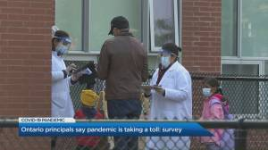 Ontario principals say pandemic is taking a toll on their mental health (04:03)