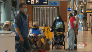 AMA Travel: The importance of insuring your trips amid pandemic travel (05:13)