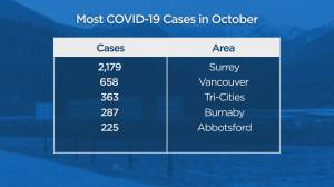 B.C. sets another one-day record for new COVID-19 cases (01:39)