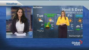 Global News Morning weather forecast: March 16, 2021 (02:17)