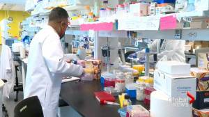 University of Lethbridge researchers work to find COVID-19 treatment