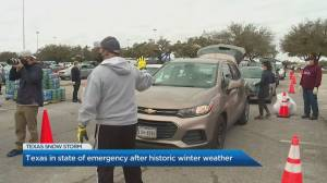 Play video: Canadian living in Texas shares experience under state of emergency