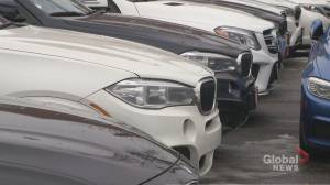 Auto thefts are on the rise for car owners and dealers (02:11)