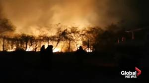 Bolivia ramps up efforts to control wildfires