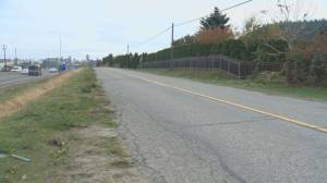 A man who was seriously injured and had his dog killed in a hit and run in West Kelowna urges the driver to come forward (02:01)