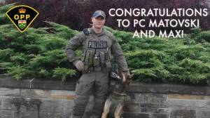 Essex County OPP mark milestone in career of K9 Maximus and his handler (01:53)