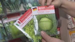 Get Gardening: Starting your seeds (04:22)