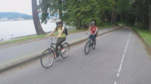 Future of vehicle traffic in Stanley Park up for debate