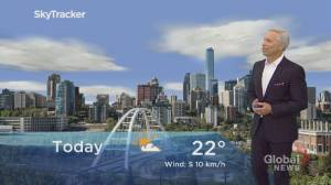 Edmonton afternoon weather forecast: Friday, June 19, 2020