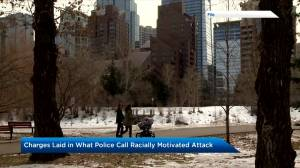 Calgary police charge woman after 'racially motivated hate crime' (01:57)