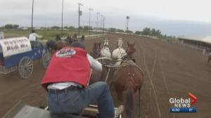 Rodeo athletes feeling financial pinch without Calgary Stampede (01:20)