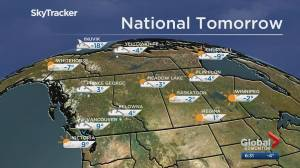 Edmonton weather forecast: Nov 29 (03:08)