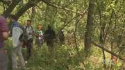 Play video: Environmentalists, with help of public, categorize biodiversity in Saint-Jacques Escarpment