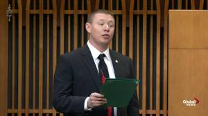 Liberal MP asks question in Mi'kmaw language in House of Commons
