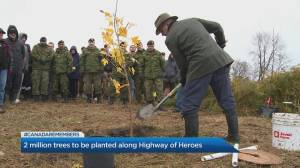2 million trees to be planted along Highway of Heroes