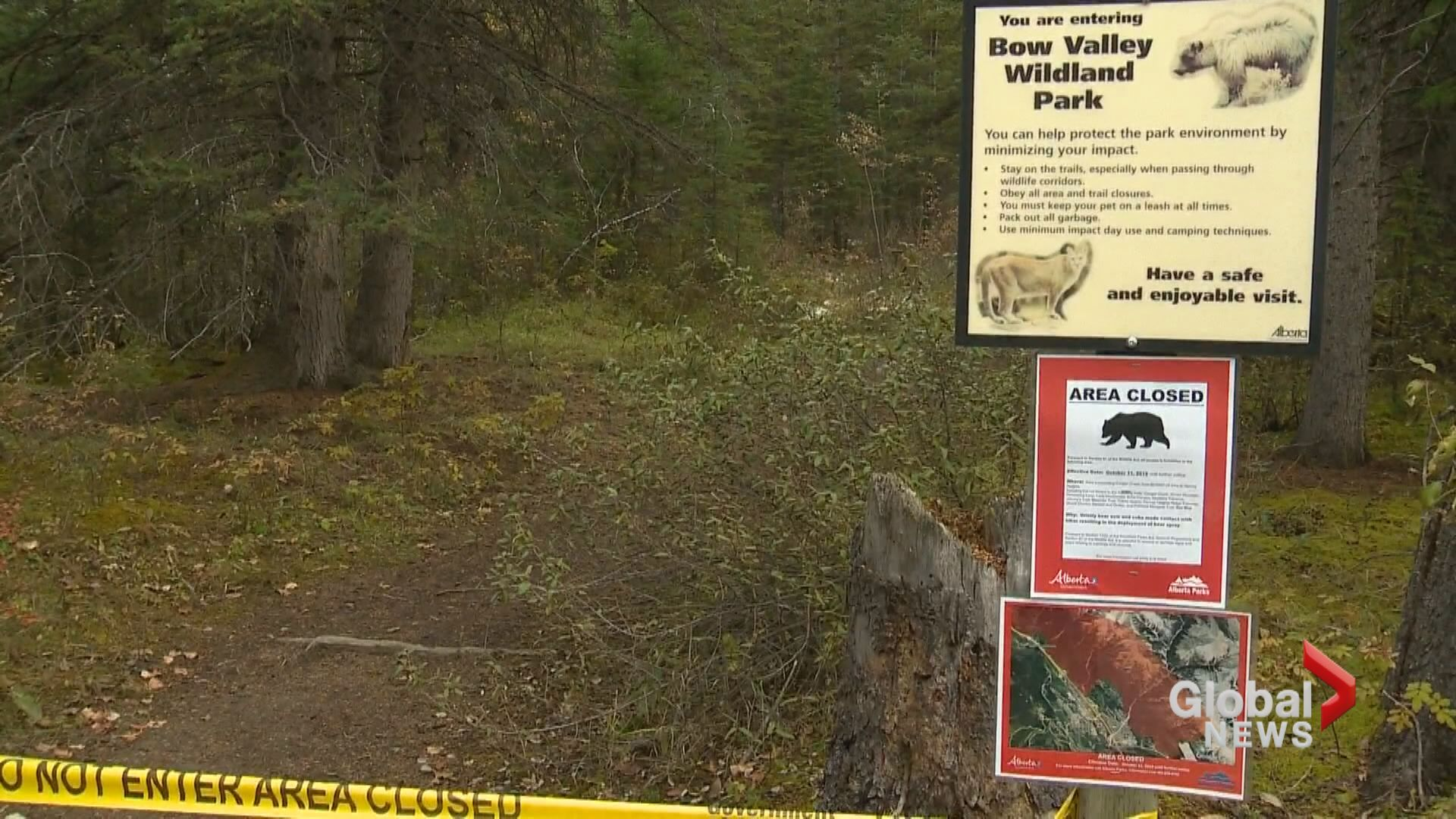Large area of Kananaskis Country closed after bear 'made contact with hiker'