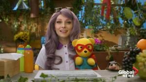 Miss Persona announces cancellation of Teddy Bear Kindergarten