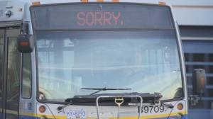 Transit strike now impacting bus service
