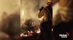 Dixie wildfire continues to rage in northern California (02:08)
