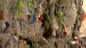 Alberta reacts to federal single-use plastics ban