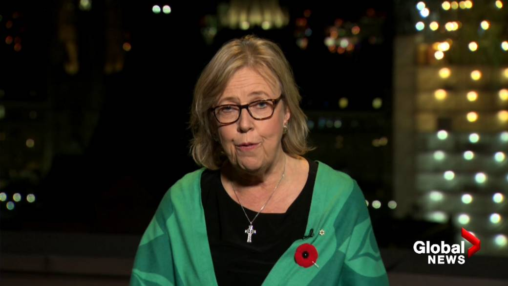 Elizabeth May stepped down as leader of the Green Party. Who will take her place?