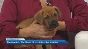 The Word on The Street collaborates with The Toronto Humane Society
