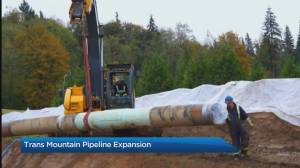 The pipeline debate and Federal Court of Appeal Decision on TMX