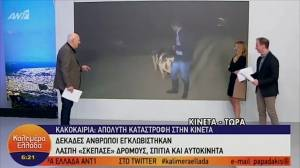 Pugnacious pig harasses Greek journalist live on the air