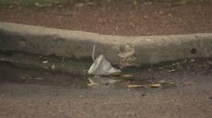 Edmonton considers tougher penalties for littering